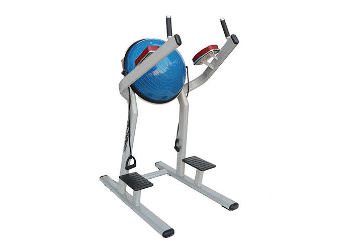 Lifetime Fitness Workout Equipment / Chin Dip Leg Raise With Bosu Ball Machine